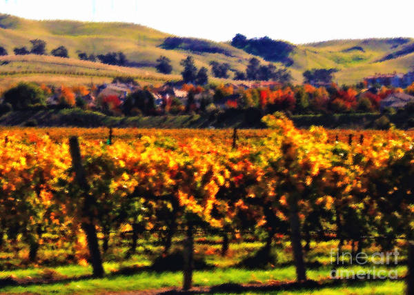 California Poster featuring the photograph Autumn In The Valley 2 - Digital Painting by Carol Groenen
