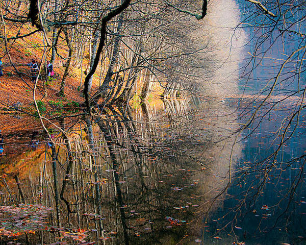 Autumn Poster featuring the photograph Autumn by Okan YILMAZ
