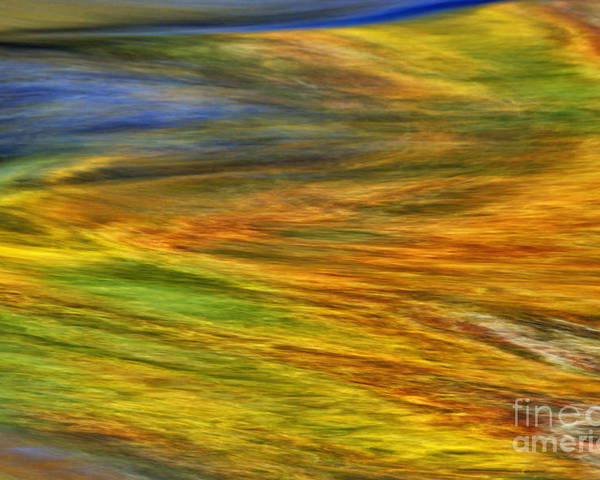 Abstract Poster featuring the photograph Autumn Reflections - D006078 by Daniel Dempster