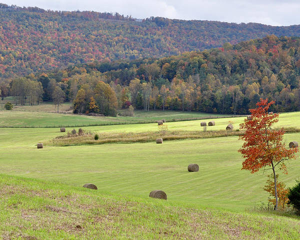 Landscapes Poster featuring the photograph Autumn Valley Hay Bales by Jan Amiss Photography