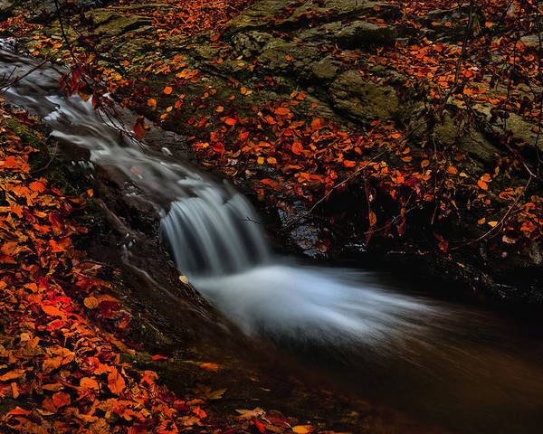 Nature Poster featuring the photograph Autumn Waterfall by Irinel Cirlanaru