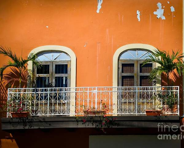 Window Poster featuring the photograph Balcony With Palms by Perry Webster