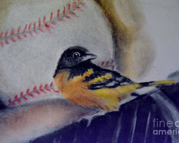 Oriole Poster featuring the drawing Baltimore Orioles by AE Hansen