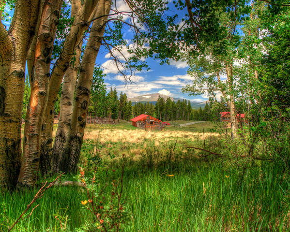 Landscape Poster featuring the photograph Barn In The Meadow by Richard Saxon