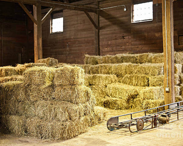 Barn Poster featuring the photograph Barn With Hay Bales by Elena Elisseeva