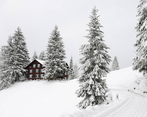 Winter Landscape Poster featuring the photograph Beautiful Winter Landscape With Trees And House by Matthias Hauser