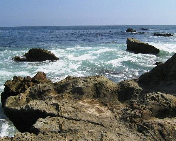 Laguna Beach Poster featuring the photograph Beauty Of The Sea by Shawna Cansdale