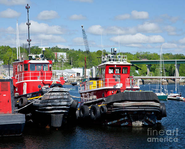 America Poster featuring the photograph Belfast Tugboats by Susan Cole Kelly