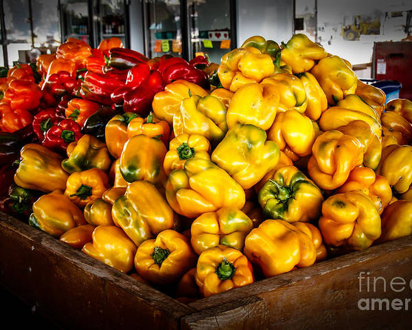 Peppers Poster featuring the photograph Bell Peppers by Robert Bales