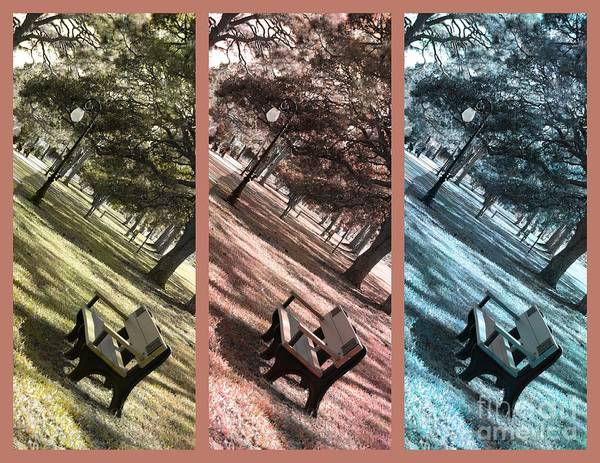 Triptych Poster featuring the photograph Bench In The Park Triptych by Susanne Van Hulst
