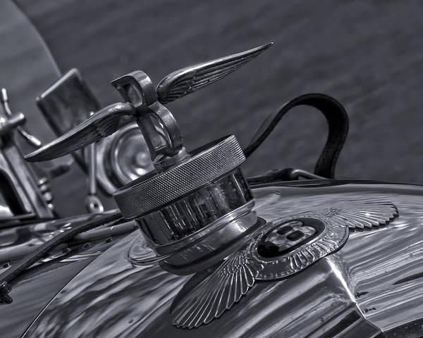 Bonnet Poster featuring the photograph Bentley by Nigel Jones