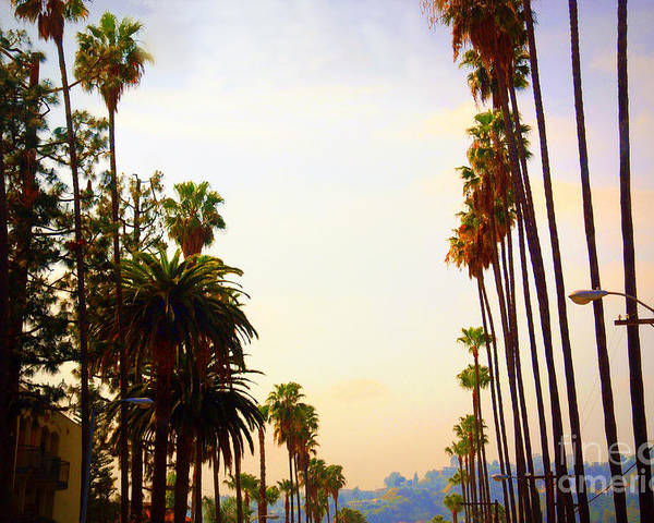 Beverly Hills Poster featuring the photograph Beverly Hills In La by Susanne Van Hulst