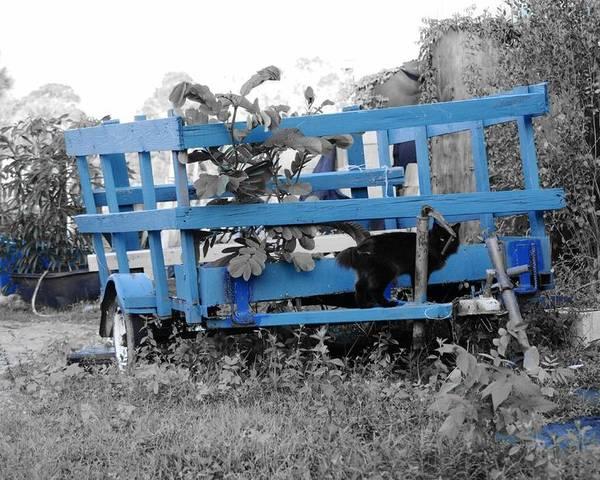 Wagon Poster featuring the photograph Blue Farm Wagon by Lynda Dawson-Youngclaus