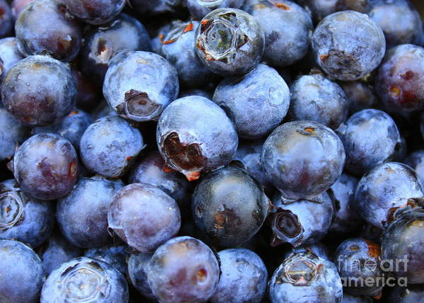 Food Poster featuring the photograph Blueberries by Carol Groenen