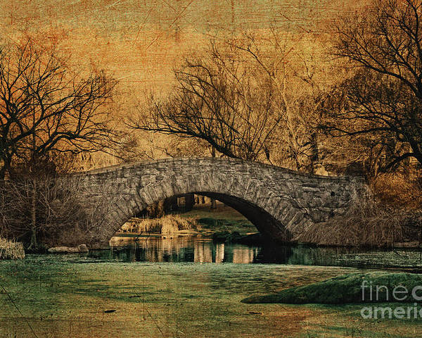 Central Park Poster featuring the photograph Bridge From The Past by Nishanth Gopinathan