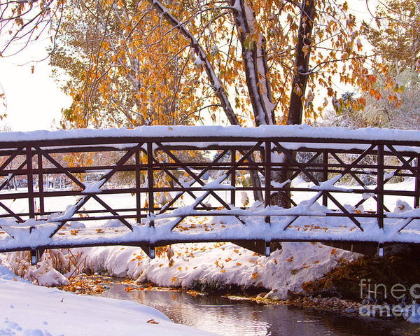 Autumn Poster featuring the photograph Bridge Over Icy Waters by James BO Insogna
