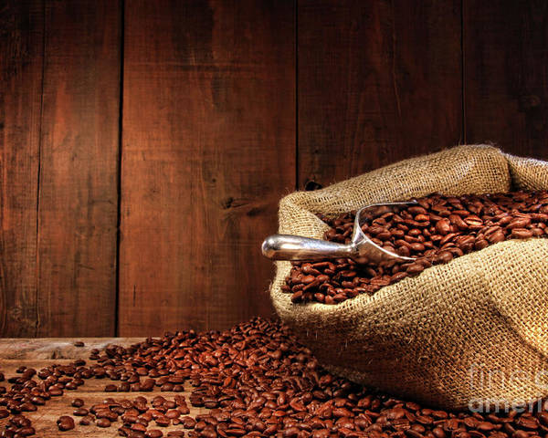Aroma Poster featuring the photograph Burlap Sack Of Coffee Beans Against Dark Wood by Sandra Cunningham