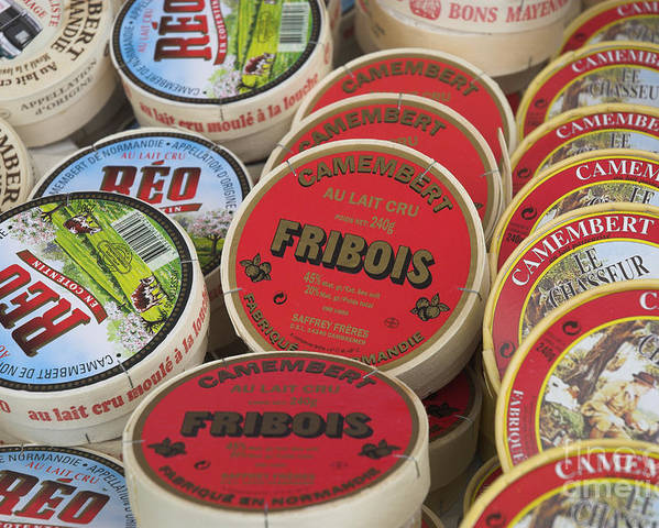 Camembert Poster featuring the photograph Camembert Cheeses by Mark Azavedo