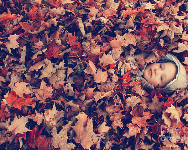 autumn Prints Poster featuring the photograph Camouflage 02 by Aimelle