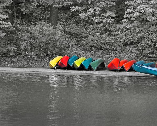 Canoe Poster featuring the photograph Canoes In A Row by Gord Patterson