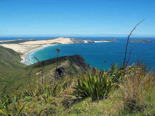 New Zealand Poster featuring the photograph Cape Reinga - North Island by Peter Mooyman