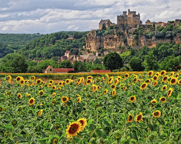 Castle Poster featuring the photograph Castle In Dordogne Region France by Dave Mills