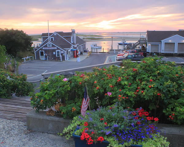 Chatham Poster featuring the photograph Chatham Fish Pier Summer Flowers Cape Cod by John Burk