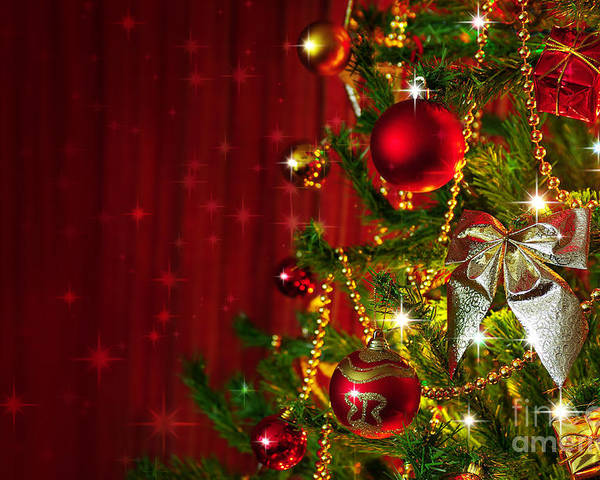Artificial Poster featuring the photograph Christmas Tree Detail by Carlos Caetano