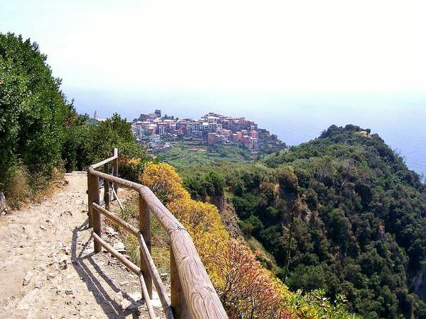 Italy Poster featuring the photograph Cinqre Terre Corniglia From The Trail by Marilyn Dunlap