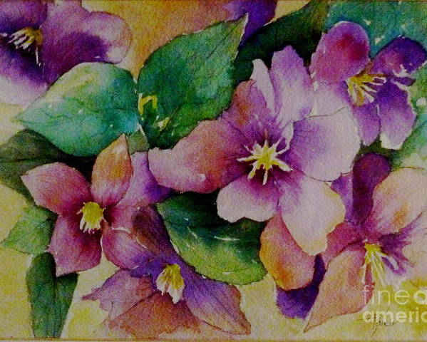 Floral Poster featuring the painting Clematis by Alma Pancir