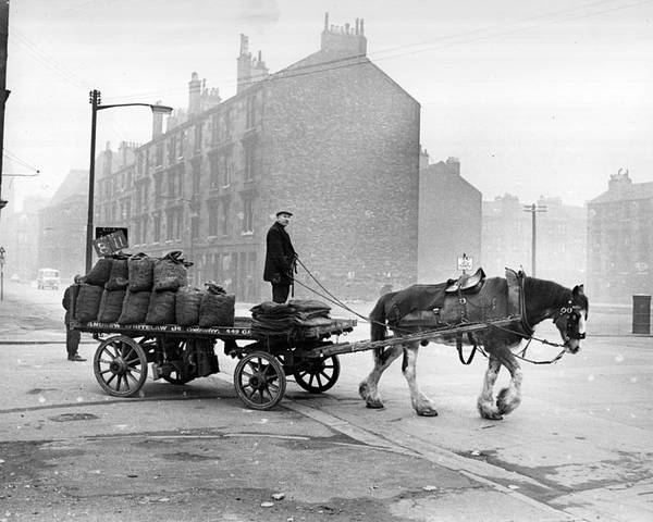 Adult Poster featuring the photograph Coalman And Cart by Albert McCabe