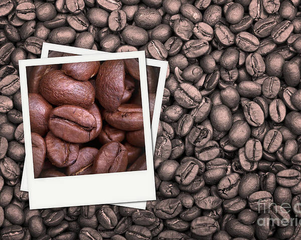 Addiction Poster featuring the photograph Coffee Beans Polaroid by Jane Rix