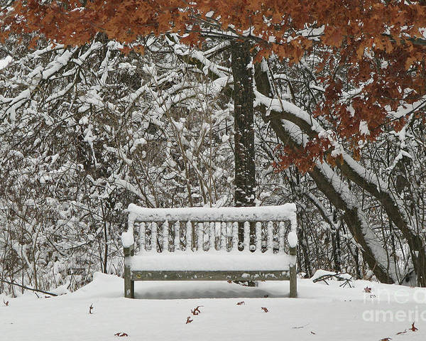 Fine Art Poster featuring the photograph Come Sit Awhile by Inspired Nature Photography Fine Art Photography