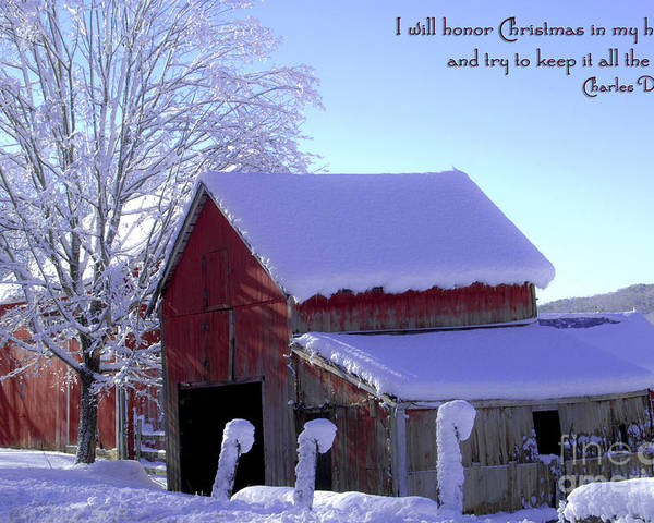 Winter Poster featuring the photograph Connecticut Christmas Connecticut Usa by Sabine Jacobs