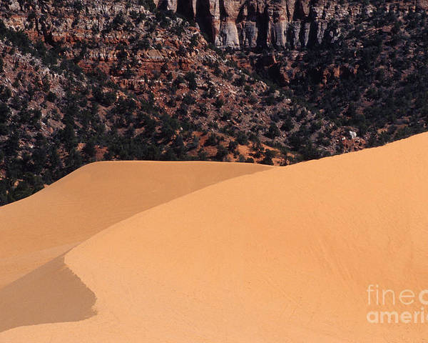 Bronstein Poster featuring the photograph Coral Pink Sand Dunes by Sandra Bronstein