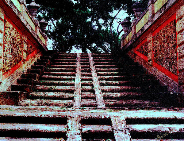 Stairway Poster featuring the photograph Coral Stairway by Bob Whitt