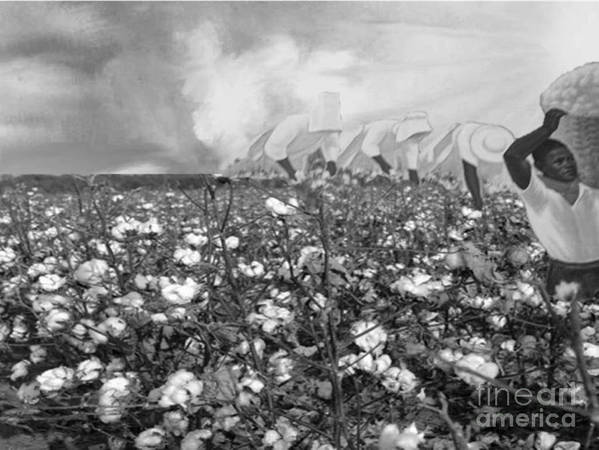 Black History Poster featuring the digital art Cotton Field by Belinda Threeths