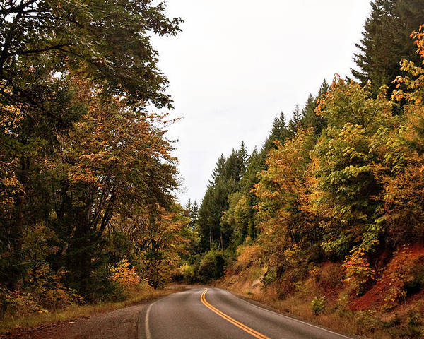 Oregon Poster featuring the photograph Country Road by Becky Thompson