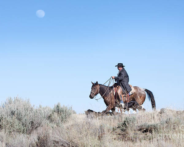 Cowboy Poster featuring the photograph Cowboy Desert Moon by Cindy Singleton