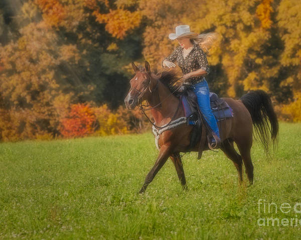 Horse Poster featuring the photograph Cowgirl by Susan Candelario