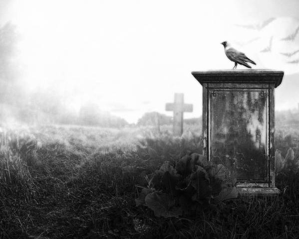 Ancient Poster featuring the photograph Crow On A Gravestone by Jaroslaw Grudzinski