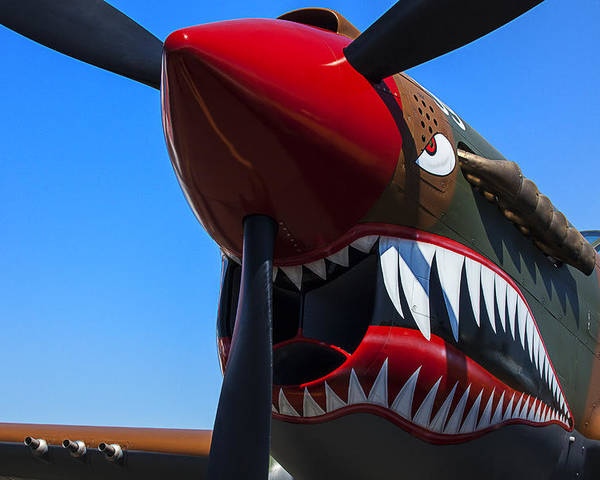 Curtiss P-40n-5 Kittyhawk Poster featuring the photograph Curtiss P-40n-5 Kittyhawk by Garry Gay