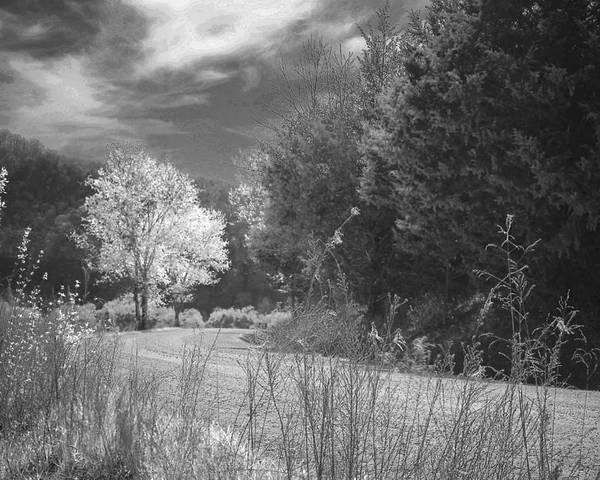 Mood Poster featuring the photograph Curve In The Road by Cindy Rubin