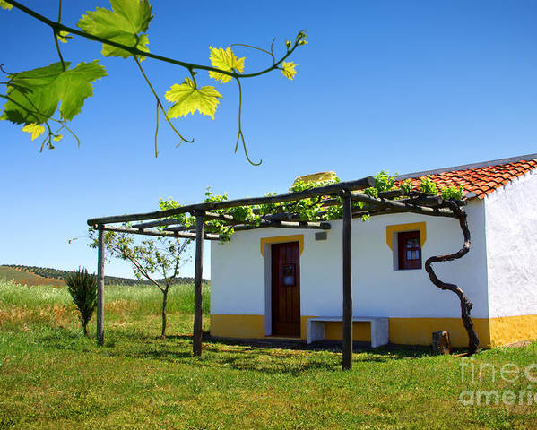 Alentejo Poster featuring the photograph Cute House by Carlos Caetano