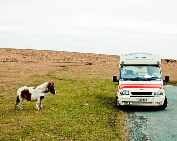 Dartmoor Poster featuring the photograph Dartmoor Pony Fancies An Ice Cream by Simon Clare