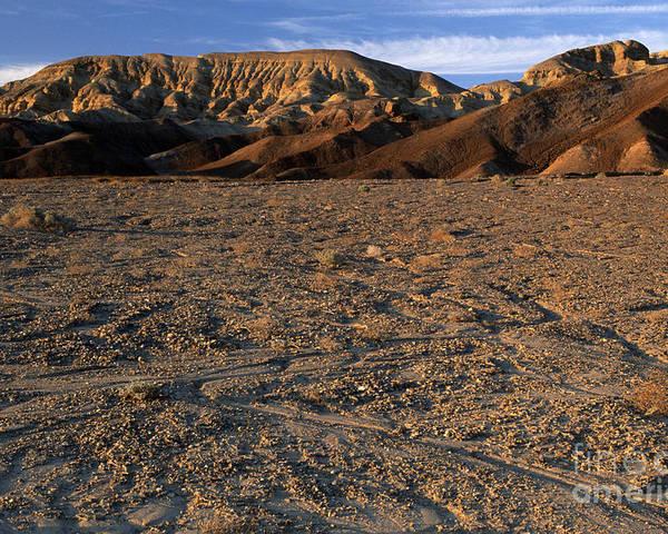 Sandra Bronstein Poster featuring the photograph Death Valley by Sandra Bronstein