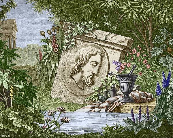 Dioscoridas Poster featuring the photograph Dioscorides, Ancient Greek Physician by Sheila Terry