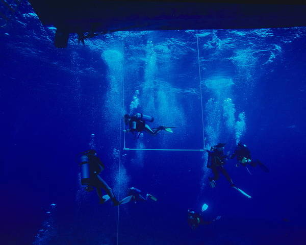 Boat Poster featuring the photograph Divers Decompressing Beneath A Boat by Alexis Rosenfeld