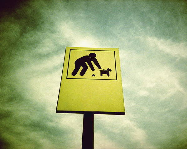 Sign Poster featuring the photograph Dog Fouling Sign by Kevin Curtis