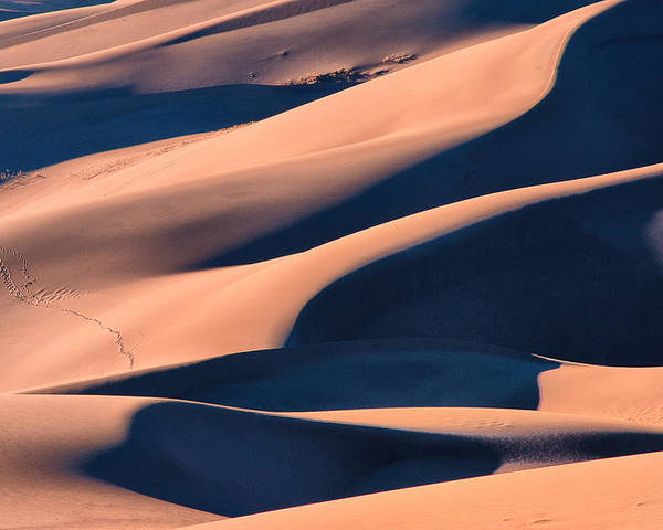 Colorado Poster featuring the photograph Dune 3 by Jennifer Litchfield